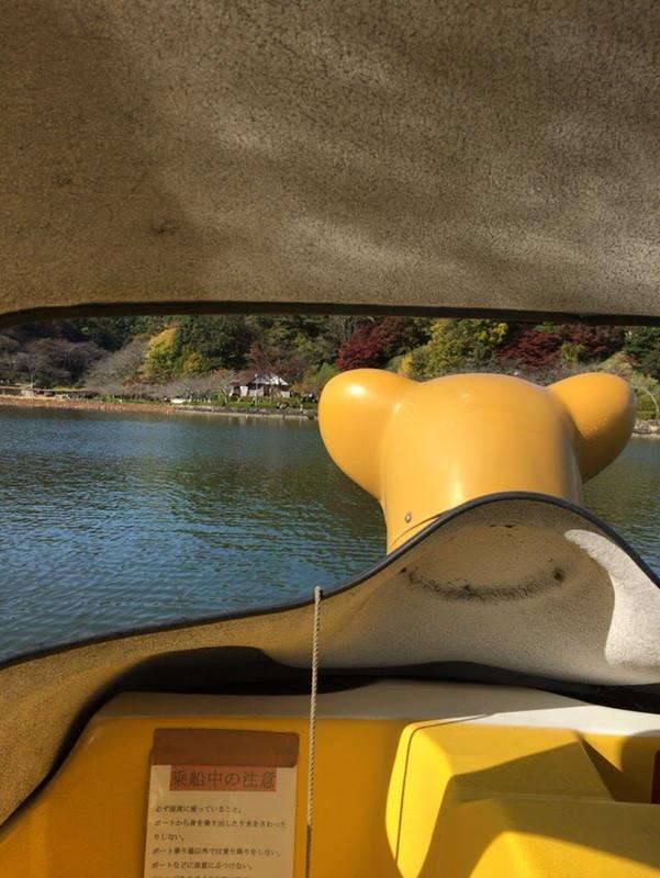 水上にポケモンはいるのか?蓮華寺池ボートでポケモンGO