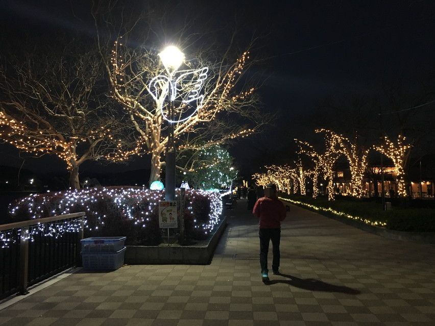 一方藤枝蓮華寺公園のイルミネーションには見物人がいた