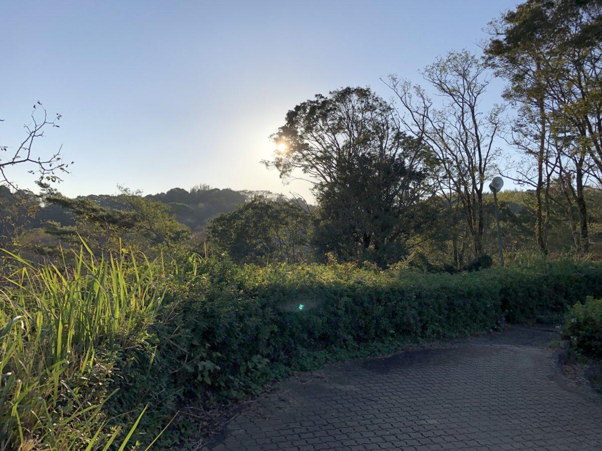 蓮華寺池公園の滑り台を最速で滑る方法
