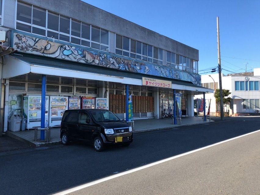 焼津市ツナコープで南鮪丼限定10食を食べる。旧漁港前