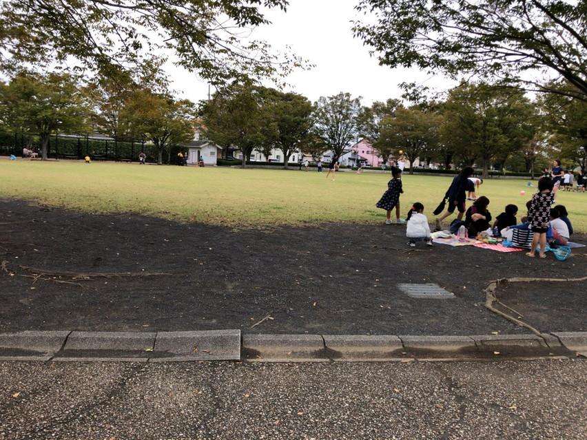 清見田公園:ターザンロープと広い滑り台がある焼津公園