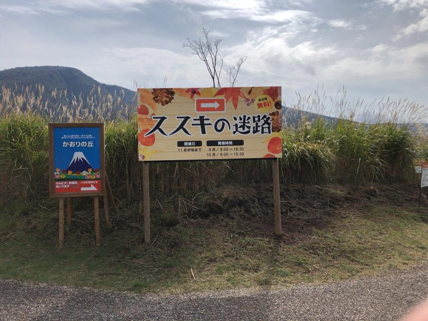 富士こどもの国にススキの大迷路に行ってきました