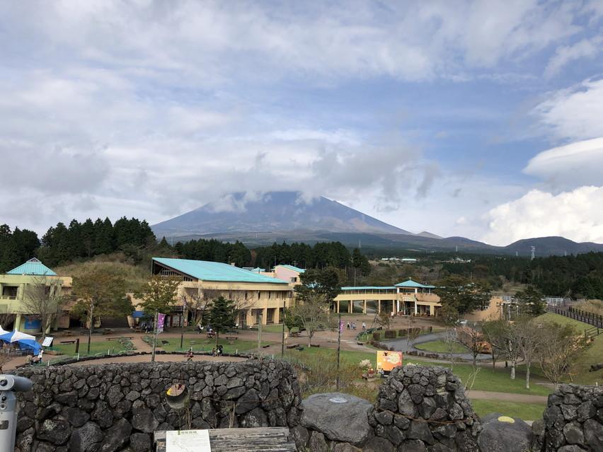 幼稚園児の子供が最も楽しんだのはクモの巣ネットでした。富士こどもの国