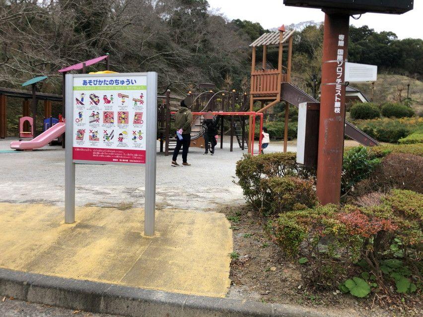 藤枝市の蓮華寺池公園にはうんてい(雲梯)がありました