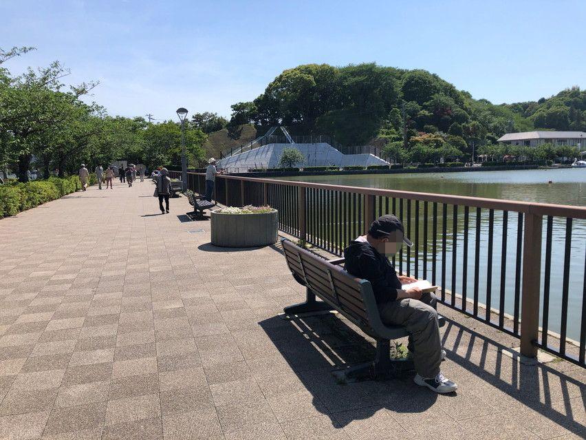 釣竿で空高く凧揚げしているのを見ました 藤枝蓮華寺池公園