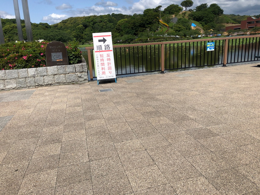 午前中の朝九時頃に藤枝蓮華寺池公園に行きましたが既に滑り台は暑くて遊べませんでした