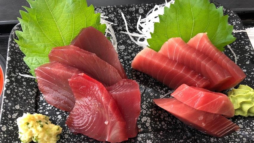 小川港魚河岸食堂ランチ。焼津地元の食堂で鰹と鮪の刺身堪能