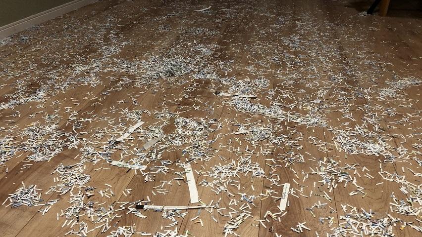 シュレダーの紙吹雪で大惨事vsルンバ